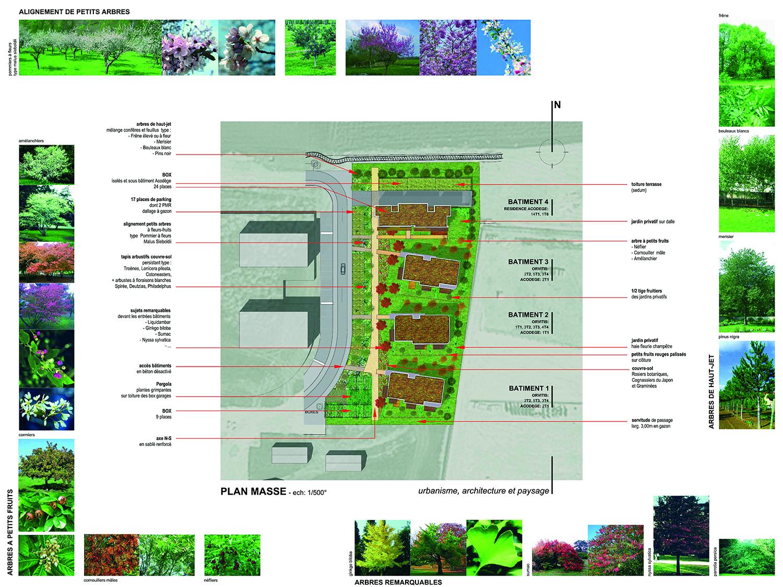 50-logements-bbc-orvitis-gevrey-chambertin-plan-masse
